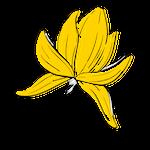 gele bloem_vida compleet