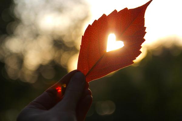 Natuurlijk Vida - blog - Vanuit je hart leven